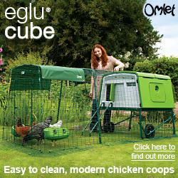 Omlet Cube