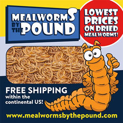 Happy Hen mealworms